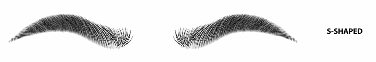 An illustration of s-shaped eyebrows